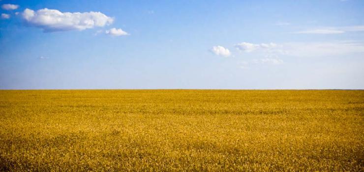 Ukraine Accounting Reform Program (UARP)