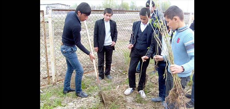 "Schoolchildren in Aliyetmazli community in Imishli planting trees in their schoolyard within the Civic Engagement Grant program executed by ""Dalga"" Ecology and Nature Protection Public Union"